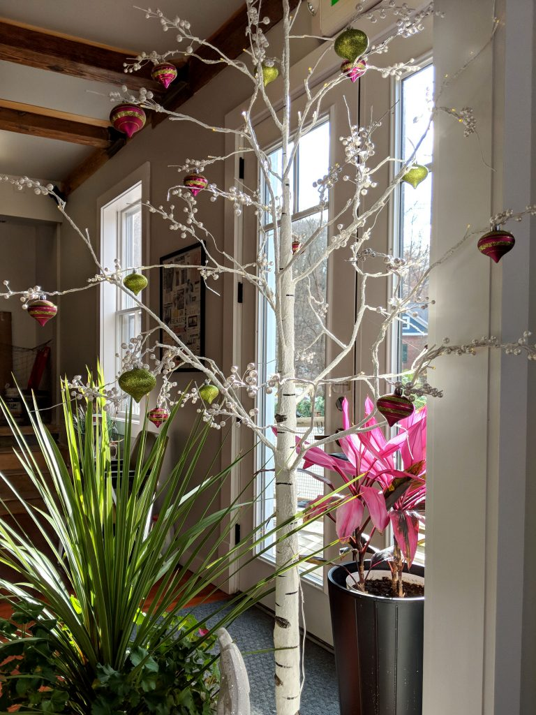 plants with christmas ornaments