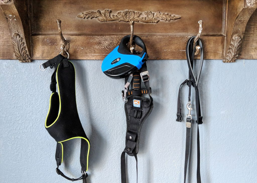 dog leashes hanging from three hooks