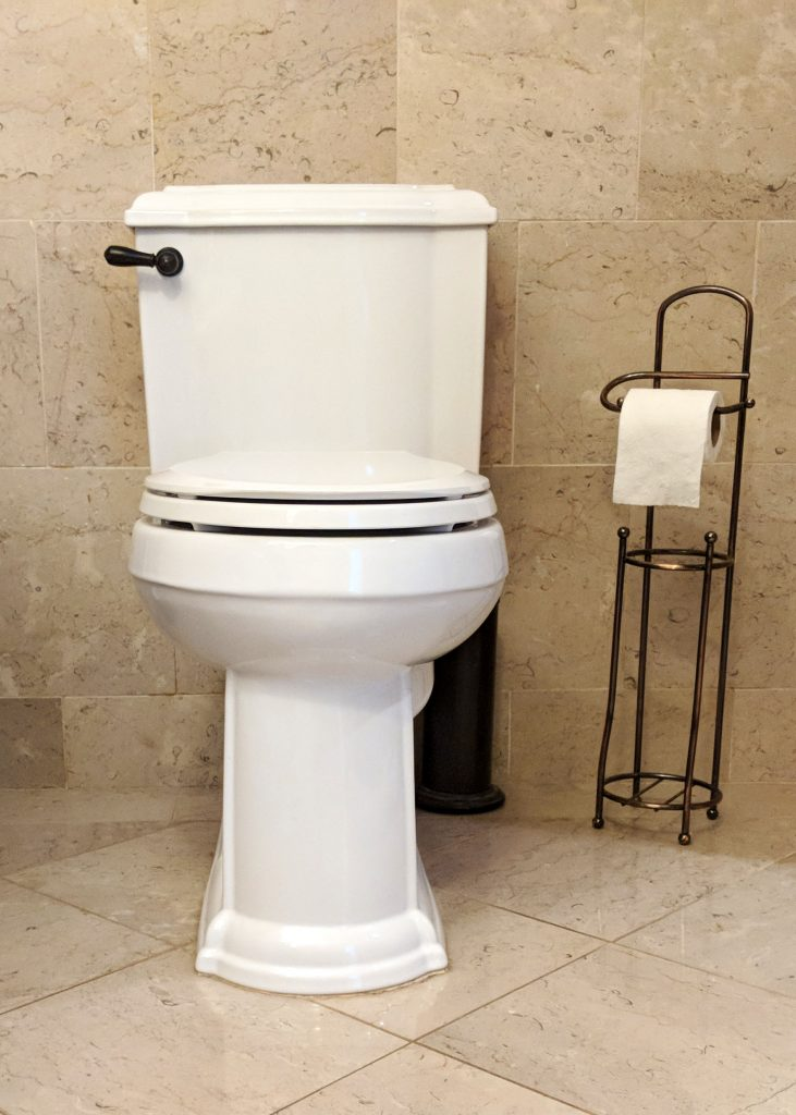 modern toilet with toilet paper stand