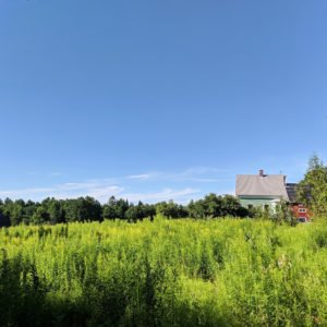 view of the Cherry Valley Farm Airbnb in Littleton, New Hampshire