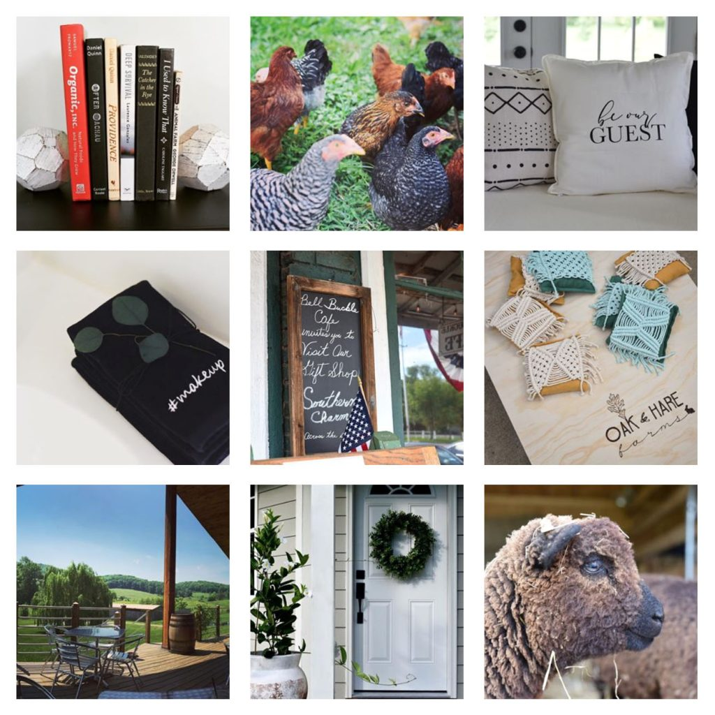 Oak and Hare Farms Instagram Feed Tennessee Airbnb